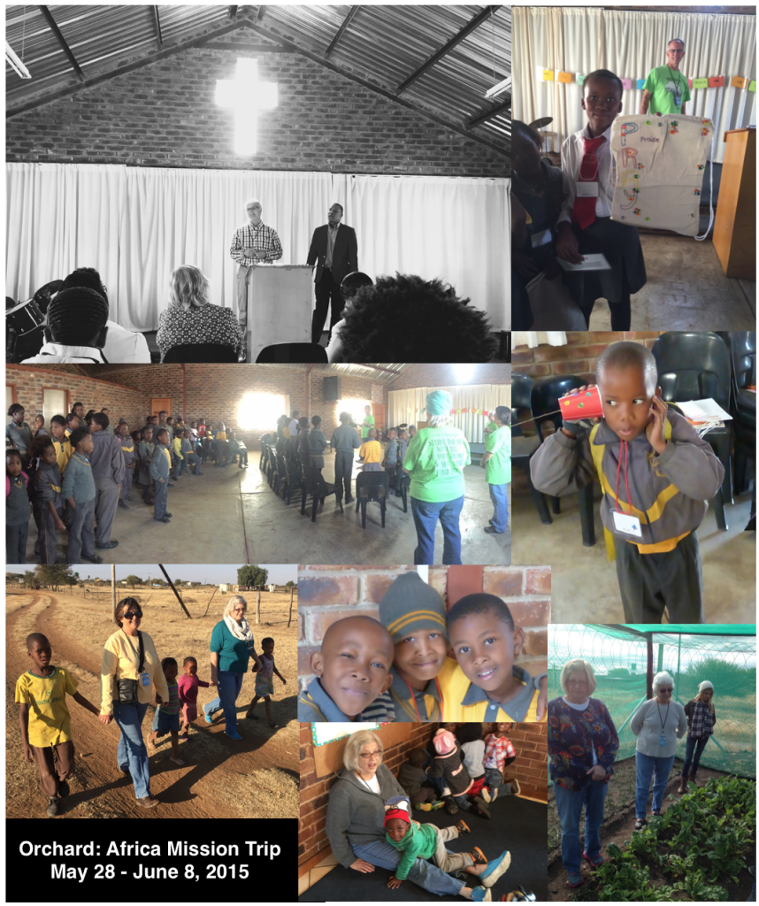 Africa Collage 2015